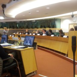"UEMO and the conference ""Towards amplified awareness of EU rights to cross border care"""