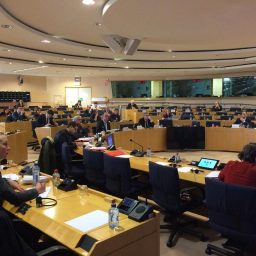 Participation of UEMO in EP Workshop on Health Promotion and Primary Prevention- Sharing Best Practices