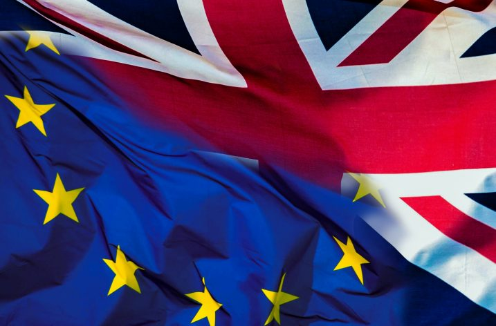 Brexit and the European Medical Profession