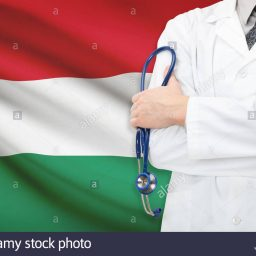 Health professionals mobility within the EU: the case of Hungary
