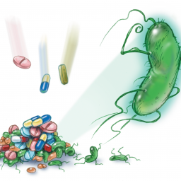 ECDC and EMA launch survey about antibiotic use and resistance