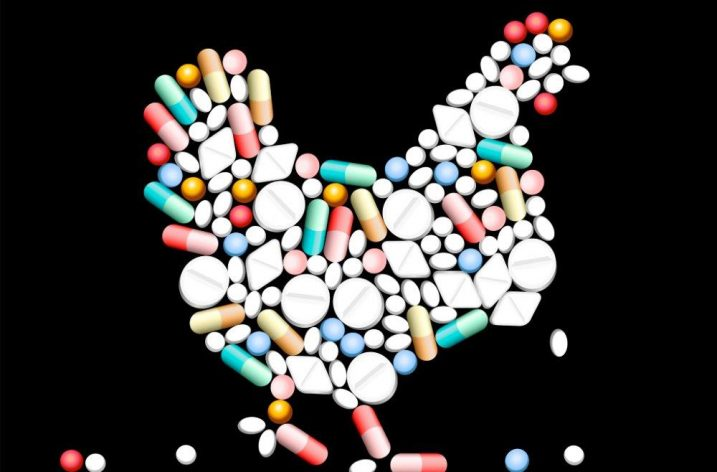 Fall in antibiotic use in food-producing animals reported by ECDC and EFSA